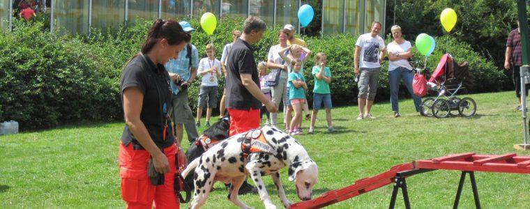 Rettungshundestaffel der Feuerwehren NRW e.V